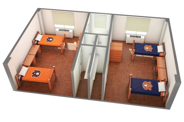 The Lower Quad 3D Side View