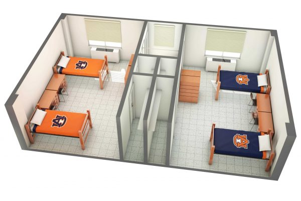 The Upper Quad 3D Side View